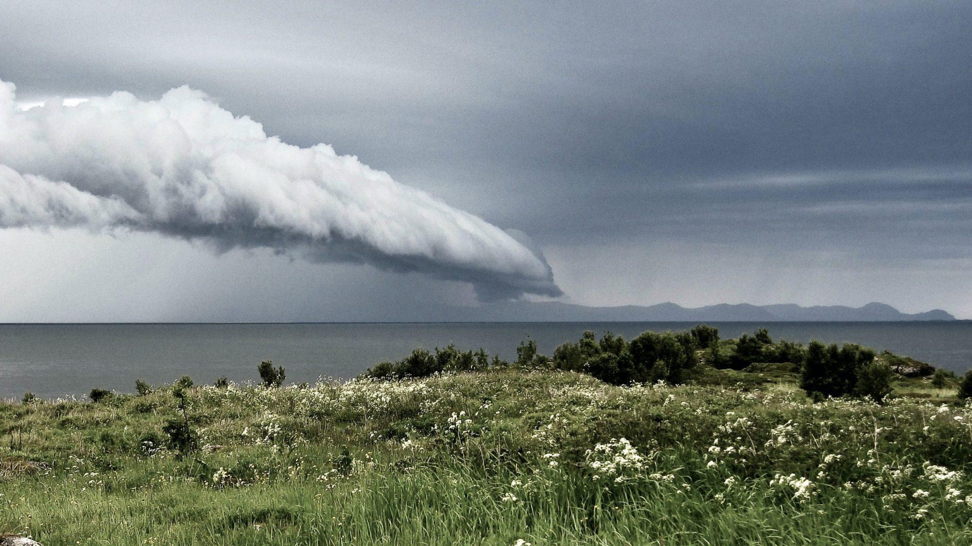 Rapport Fra Stormens øye